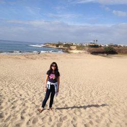 Beautiful Natural Bridges state beach in Santa Cruz
