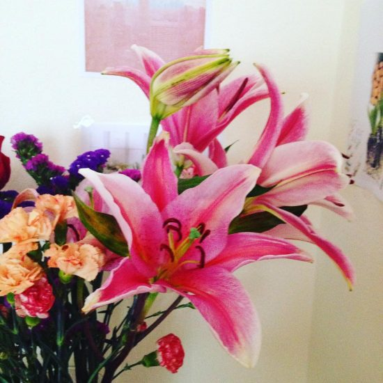 My lilies has bloomed this morning. It made my Sunday!