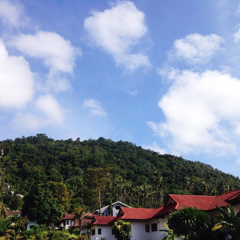 Good morning 🌞 this is view from my house 🏡. I live near the mountain on Samui. I love it when I wake up in the morning and enjoy nature. The weather is better and better these days. I am loving it. Come to visit us here! 🌴🌅