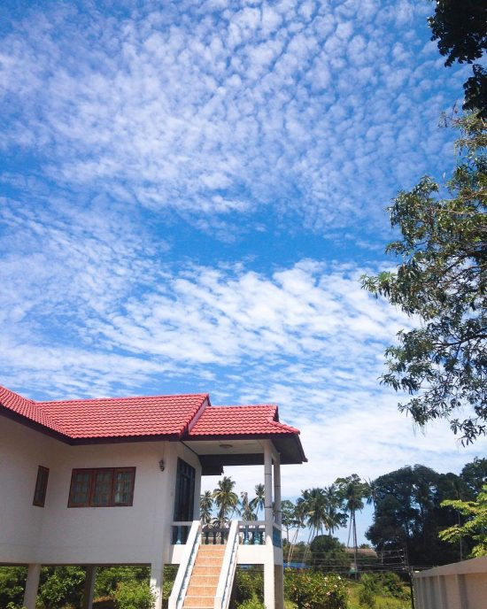 Lovely skies (view from the neighbor's house) 🏡 different days different sky landscapes