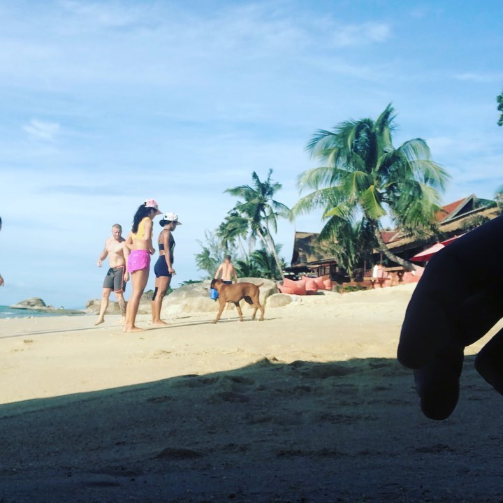 Warmup 1 km run on the beach  10 rounds: ⠀ 5 burpees⠀ 10 squats ⠀ 15 sit-ups . . . . #crossfitdiary #fitness #crossfit #lamaibeachcrossfit #samui #thailand #crossfitsamui #getfitwithme #funworkout #stronggroup #workoutmotivation #workoutinspiration #crossfitcouple #goodvibes #crossfitnearbeach  #crossfitthailand #thailandcrossfit #crossfiteverydamnday  #crossfitters  #crossfitbeach